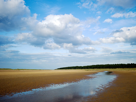 Holkham National Nature Reserve and Beach