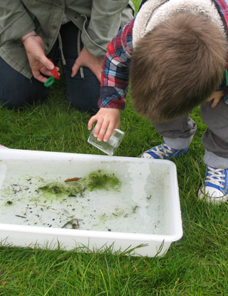 Pond Dipping | Pop along to Holkham Park for some hands on, fun family activities exploring the wildlife you can find there.  - Dalegate Market | Shopping & Café, Burnham Deepdale, North Norfolk Coast, England, UK