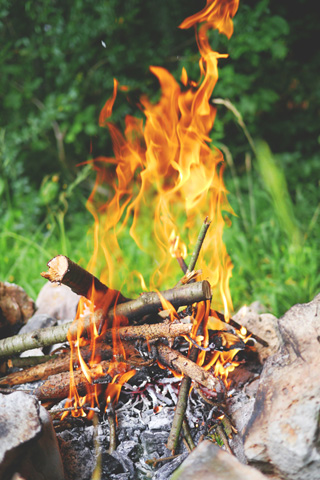 Father's Day Dens and Fire, Holkham Hall, Wells next the Sea, Norfolk, North Norfolk | A Day with Dad - celebrate Father's day with a morning or afternoon in the woods. | father's day, woodland, activities, childrens event